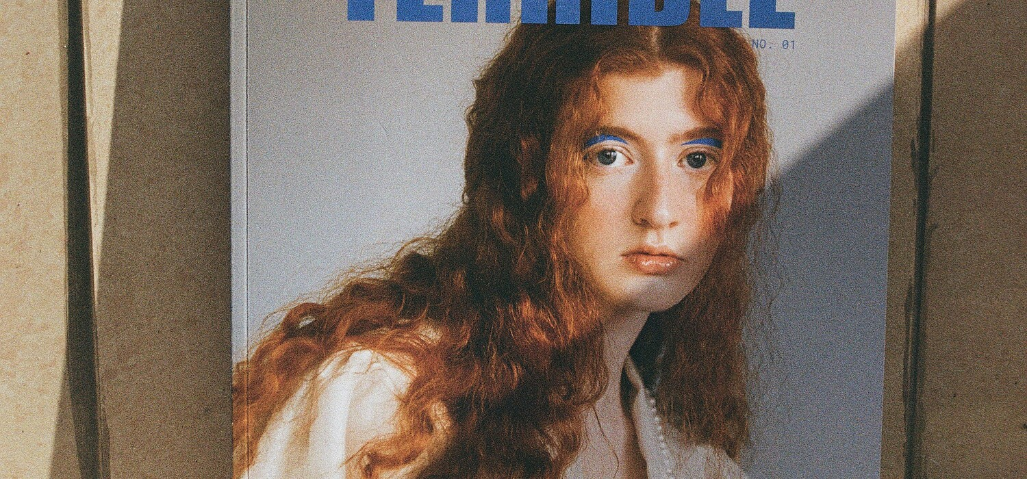TERRIBLE Magazine N.02